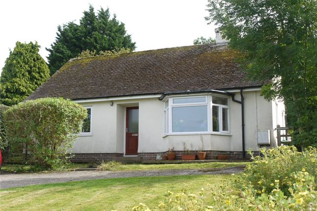Thumbnail Bungalow to rent in Lyme Road, Uplyme, Lyme Regis, Dorset
