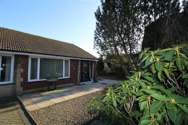 Thumbnail Semi-detached bungalow for sale in Ribblesdale Road, Ribchester, Preston