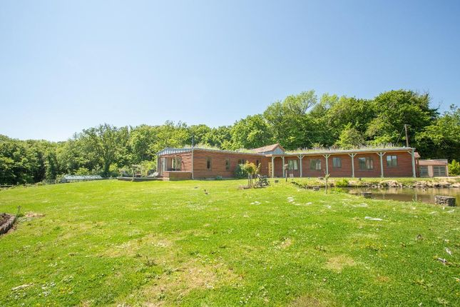 Thumbnail Detached house for sale in Studdens Lane, Cowbeech, East Sussex