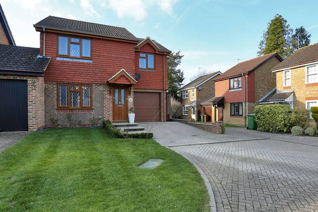 Thumbnail Link-detached house to rent in Cypress Grove, Tunbridge Wells