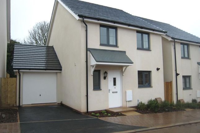 Thumbnail Detached house to rent in Mimosa Way, Paignton, Devon