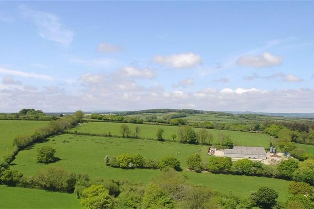 Thumbnail Land for sale in Bere Alston, Yelverton