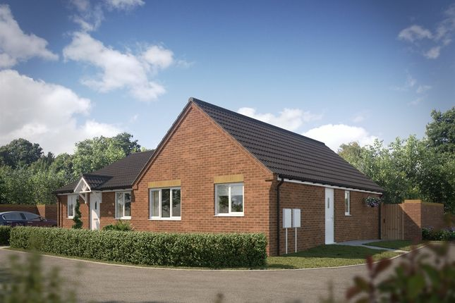 "Thumbnail Bungalow for sale in ""The Pickering"" at Darlington Road, Northallerton"