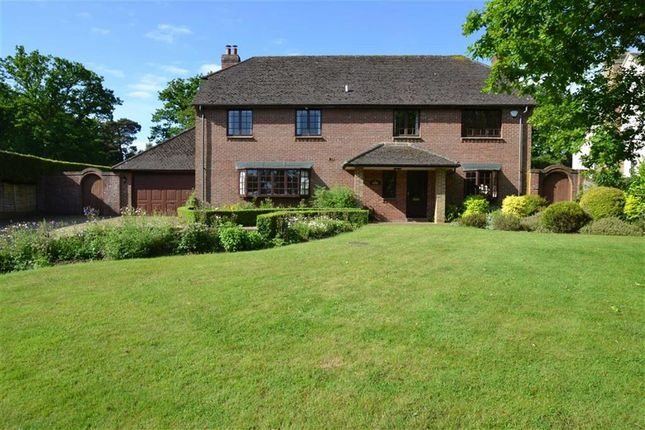 Thumbnail Detached house for sale in The Firs, Inkpen, Berkshire