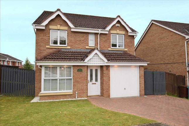 Thumbnail Detached house for sale in Taylor Avenue, Carfin, Motherwell