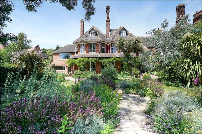Thumbnail Detached house for sale in High Street, Dunwich, Saxmundham