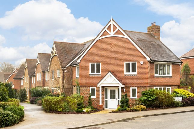 Thumbnail Detached house for sale in Cowslip Drive, Lindfield, Haywards Heath