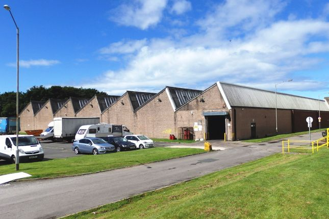 Thumbnail Industrial to let in Unit 4, Salterbeck Trading Estate, Workington