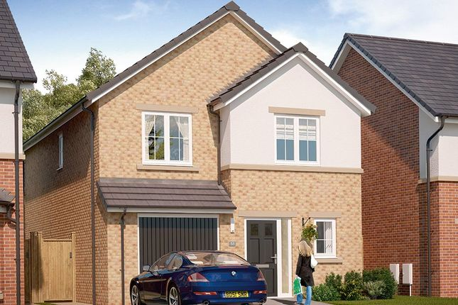 "Thumbnail Detached house for sale in ""The Ashbury"" at Markle Grove, East Rainton, Houghton Le Spring"