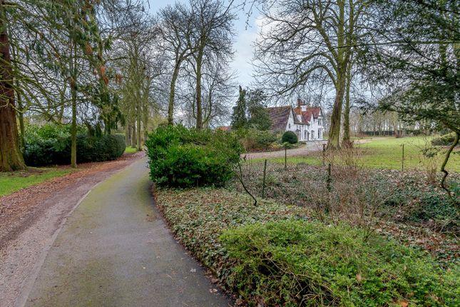 Driveway of Tindon End, Great Sampford, Saffron Walden, Essex CB10