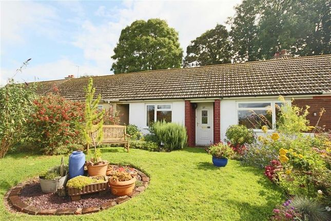 2 bed terraced bungalow for sale in Peaseditch, St Marys, Brixham