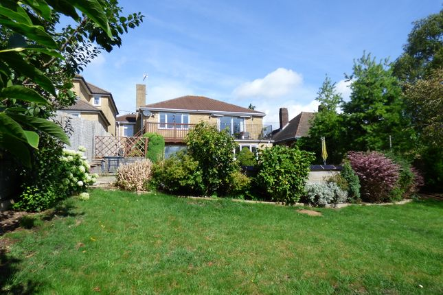 Thumbnail Detached house for sale in West Hill, Wincanton