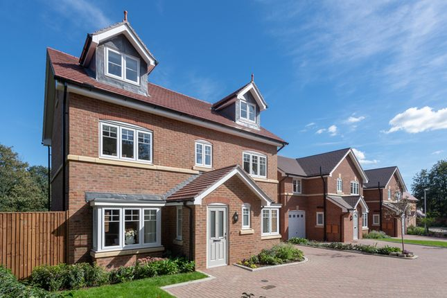 Thumbnail Detached house for sale in Howland Road, Marden