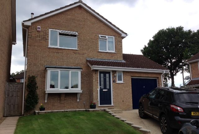 Thumbnail Detached house to rent in Gilbert Close, Alderholt, Hampshire