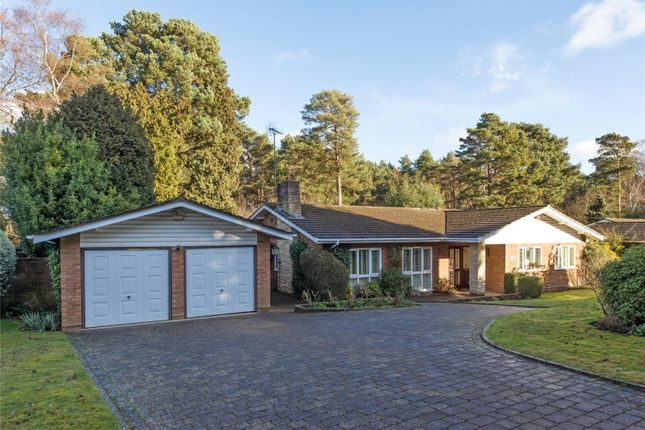 Thumbnail Detached bungalow for sale in Spinney Close, Cobham, Surrey