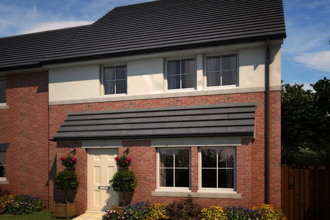 "Thumbnail Semi-detached house for sale in ""Binchester"" at Whitworth Park Drive, Houghton Le Spring"