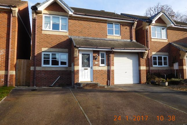 Thumbnail Detached house to rent in Ashleigh Road, Honiton