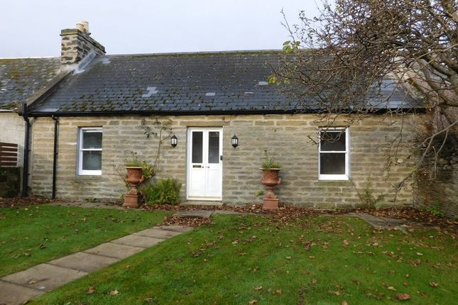 Thumbnail Bungalow for sale in Rose Street, Thurso