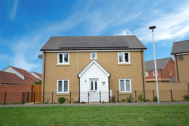 Thumbnail Detached house for sale in Trafalgar Road, Exeter