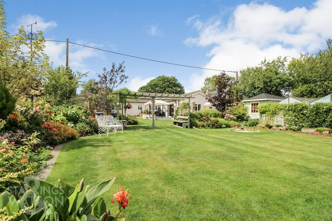 Thumbnail Detached bungalow for sale in Chandler Road, Stoke Holy Cross, Norwich