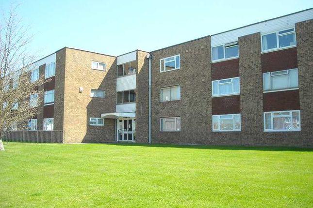 1 bed flat to rent in Selwyn Court, Long Meadow, Aylesbury