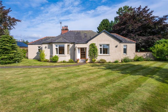 Thumbnail Property for sale in Viola Cottage, Carsie, Blairgowrie, Perthshire