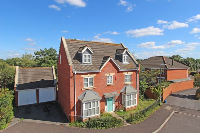Thumbnail Detached house for sale in Windsor Close, Cullompton