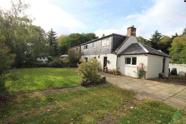 Thumbnail Semi-detached house for sale in Delny, Invergordon