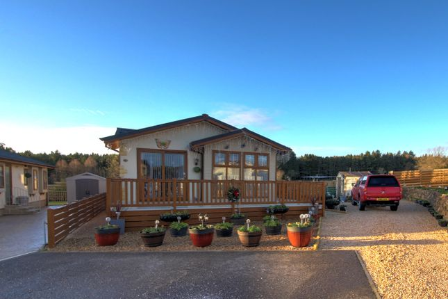 Thumbnail Bungalow for sale in Kintore, Inverurie
