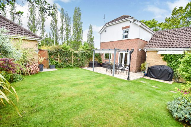Thumbnail Detached house for sale in Stilemans Wood, Braintree