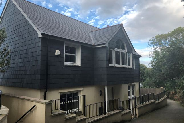 Thumbnail Detached house to rent in Swanpool Road, Falmouth
