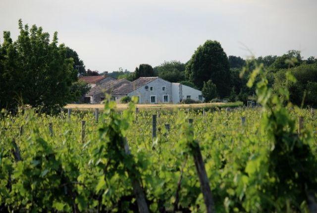 Farmhouse For Sale In Lorignac, Charente Maritime, Poitou Charentes, France