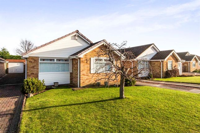 Thumbnail Detached bungalow for sale in Newstead Avenue, Stockton-On-Tees