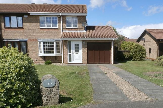 Thumbnail Semi-detached house for sale in Gloster Park, Amble, Morpeth