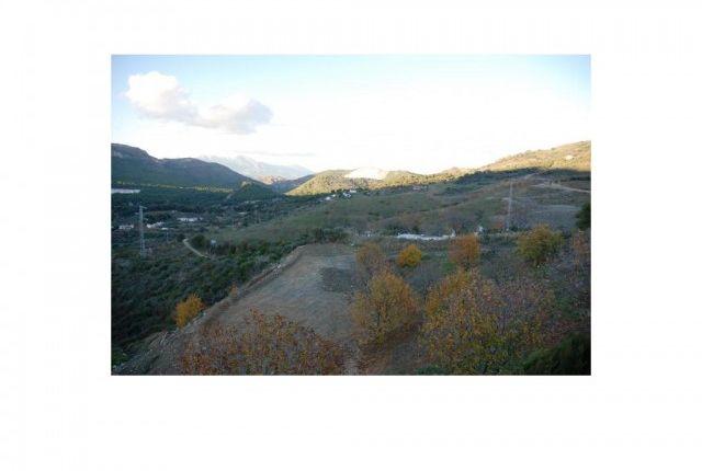 Plot And Views of Spain, Málaga, Ojén