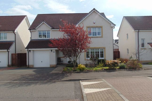 Thumbnail Detached house to rent in Meadowpark Avenue, Bathgate
