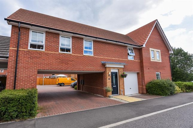 Thumbnail Property for sale in Farlakes Drive, Hempstead, Peterborough