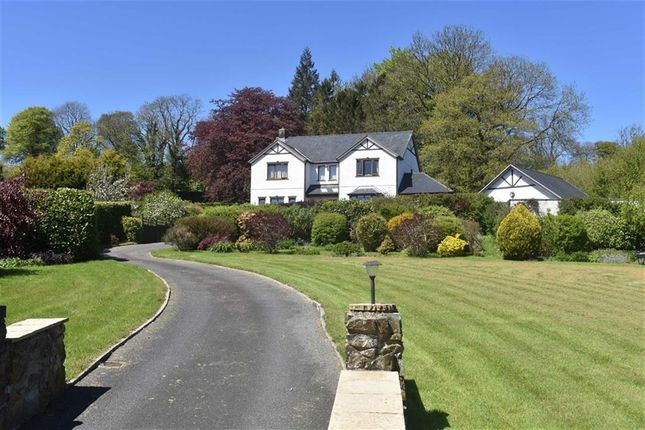 Thumbnail Detached house for sale in Alltyblacca, Llanybydder