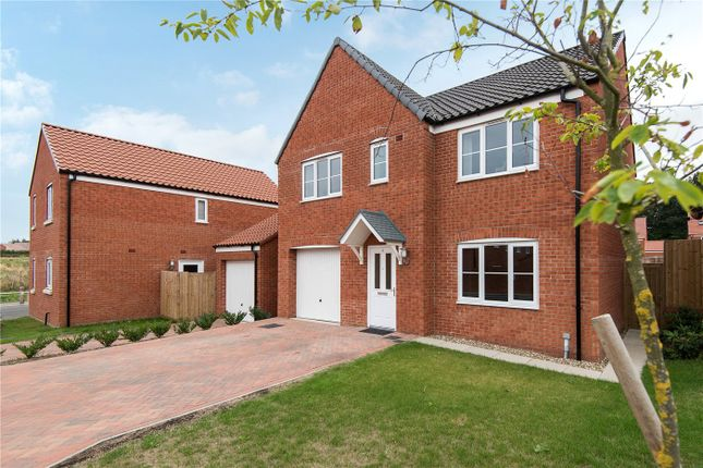 Thumbnail Detached house for sale in Bean Goose Row, Sprowston, Norwich, Norfolk