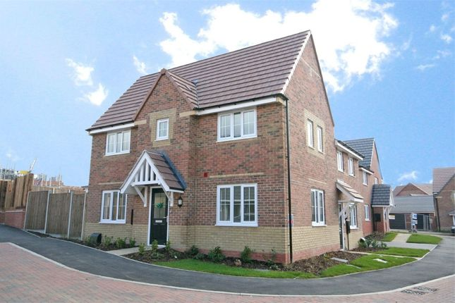 Thumbnail Semi-detached house to rent in Centenary Drive, Crick, Northampton