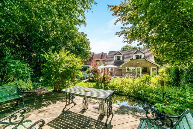 Thumbnail Detached bungalow for sale in Westbere Lane, Westbere, Canterbury