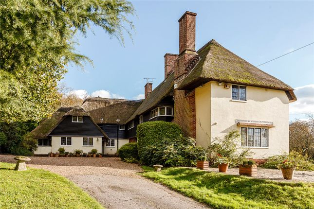 Thumbnail Detached house for sale in Hambledon Road, Hambledon, Hampshire