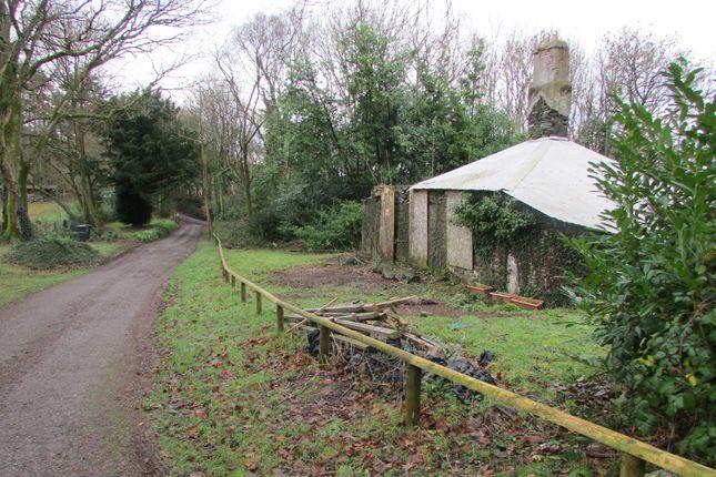 Thumbnail Lodge for sale in Dean Prior, Buckfastleigh