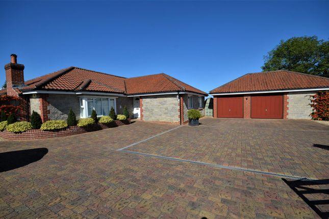 Thumbnail Detached bungalow for sale in Lower Road, Stalbridge, Sturminster Newton