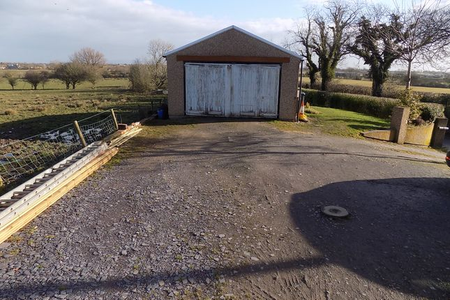Driveway And Workshop