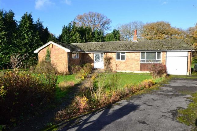 3 bed detached bungalow for sale in Rooksfield, Bishops Green, Berkshire