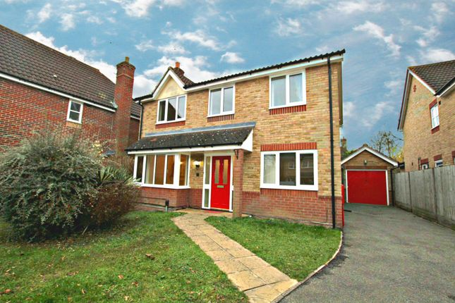 Thumbnail Detached house to rent in Brettenham Crescent, Ipswich