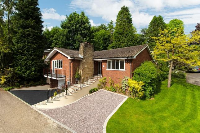 Thumbnail Detached house for sale in Sycamore Dene, Chesham