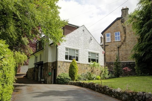 Thumbnail Detached house for sale in Queens Road, Shotley Bridge, Consett