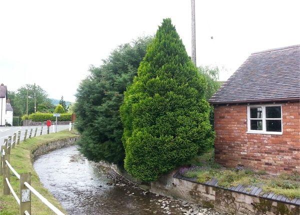 2 bed semi-detached bungalow for sale in Brockton, Worthen, Shrewsbury, Shropshire